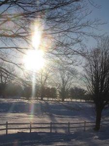e4785-winter2013046