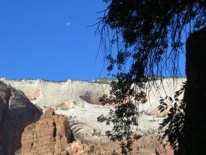 desert blue moon