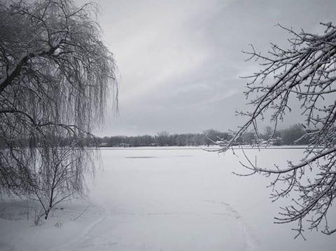 winter-dreams